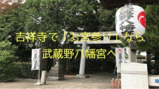 お宮参り 武蔵野八幡宮