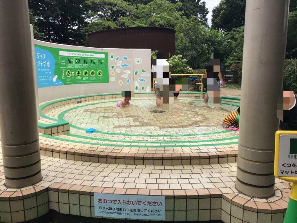 井の頭自然文化園 水遊び
