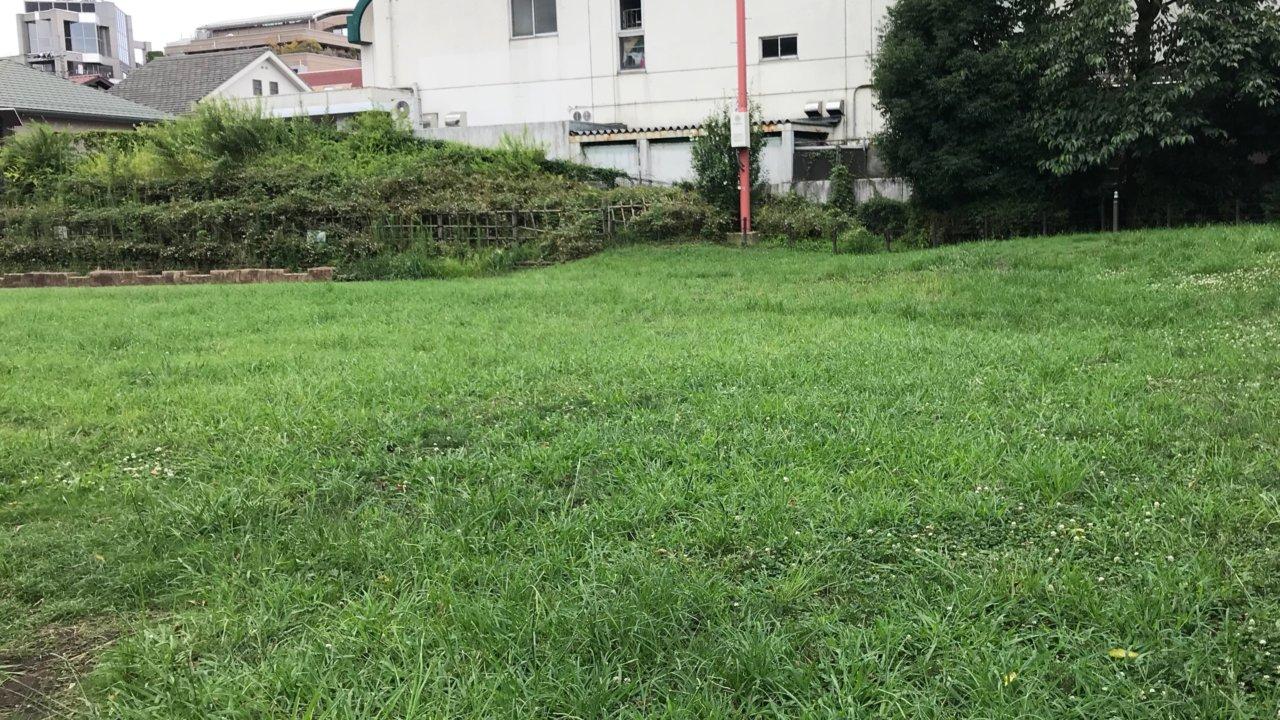 吉祥寺西公園