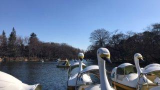 井の頭公園 ボート